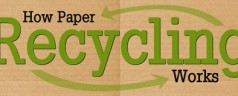Papier: het proces van recycling. (infographic)